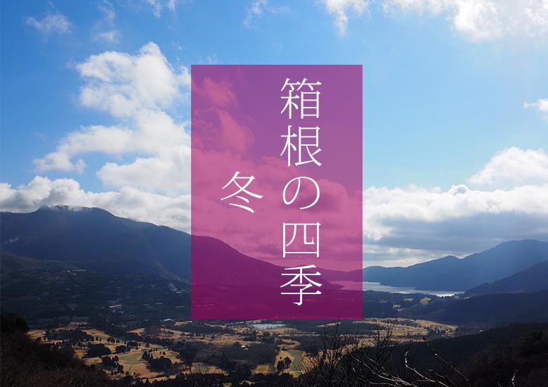 箱根の風景_冬(C)箱根・孫三総本家・花詩