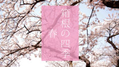 箱根の風景_春(C)箱根・孫三総本家・花詩Magosan Hanakotoba Hakone Japan
